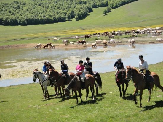 vacanze a cavallo